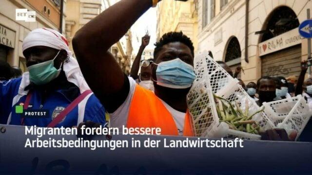 Rom: Migrantische Wanderarbeiter fordern bessere Arbeitsbedingungen in der Landwirtschaft; Bild: Startbild Youtube